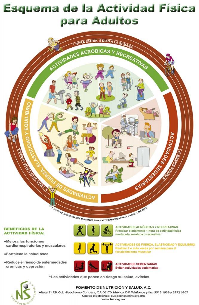 Esquema de la Actividad Física para Adultos.indd